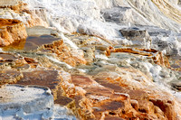 Mammoth Hot Springs 5