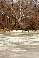 Winter on the Potomac
